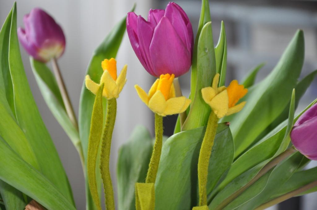 3 narcisen met tulpen op de achtergrond